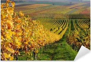 Sticker Pixerstick Automne paysage viticole dans la vallée du Rhin, en Allemagne