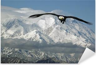 Pixerstick Sticker Bald eagle in de bergen