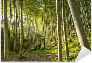 Pixerstick Sticker Bamboo Forest van Kyoto, Japan