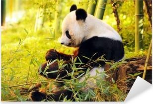 Sticker Pixerstick Big Panda assis sur le sol de la forêt mangeant le bambou