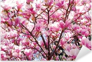Pixerstick Sticker Bloeiende magnolia