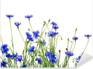 blue cornflowers Pixerstick Sticker