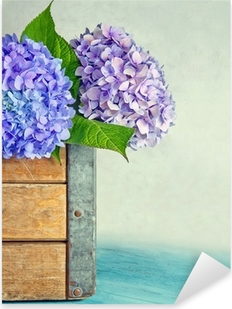 Blue hydrangea flowers in a wooden box Pixerstick Sticker