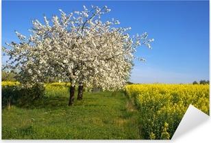 Blühender Apfelbaum Pixerstick Sticker