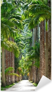 Botanical garden. Rio de Janeiro Pixerstick Sticker