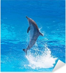 Bottlenose dolphin Pixerstick Sticker