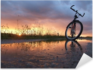 Bycicle in the puddle Pixerstick Sticker