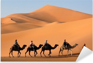 camel caravan in the sahara desert Pixerstick Sticker