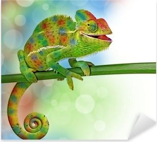 chameleon and colors Pixerstick Sticker