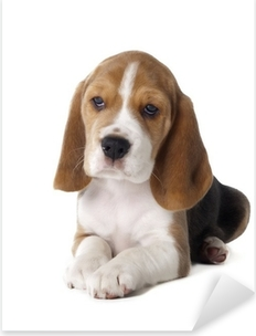 Sticker Pixerstick Chiot beagle