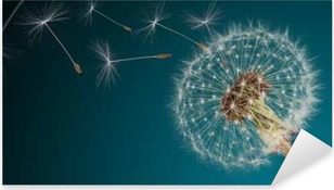 Close-up of dandelion seeds on blue natural background Pixerstick Sticker