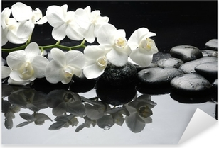 Close up white orchid with stone water drops Pixerstick Sticker