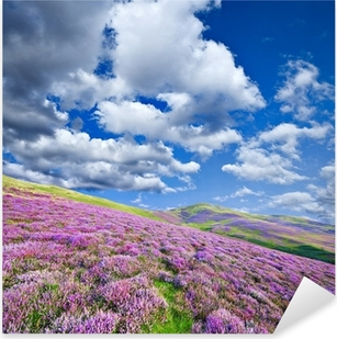 Colorful hill slope covered by violet heather flowers Pixerstick Sticker
