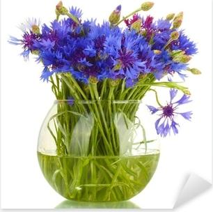 cornflowers in glass vase isolated on white Pixerstick Sticker
