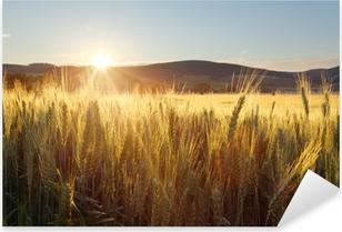 Sticker Pixerstick Coucher de soleil sur un champ de blé