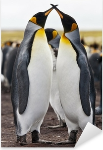 Sticker Pixerstick Couple King Penguins