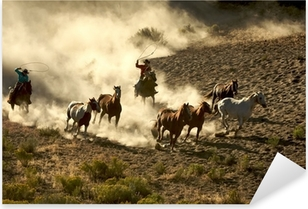 Pixerstick Sticker Cowgirl en Cowboy galopperen en roping wilde paarden