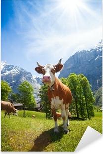 Cows in Switzerland mountains Pixerstick Sticker