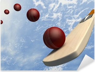 Cricket Bat With Ball Flight Path Pixerstick Sticker