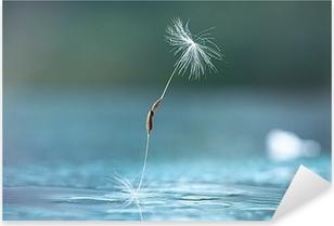dandelion seeds macro Pixerstick Sticker