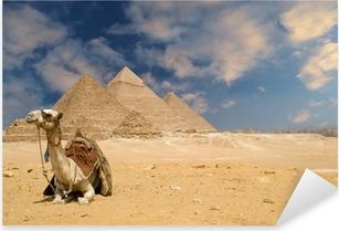 Pixerstick Sticker De piramiden kameel
