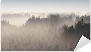 Dense pine forest in morning mist. Pixerstick Sticker
