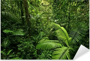 Sticker Pixerstick Dense Tropical Rain Forest