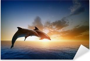 Dolphins jumping Pixerstick Sticker