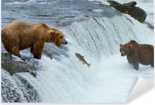 Pixerstick Sticker Een bruine grizzly beer jacht zalm in de rivier, Alaska, Katmai