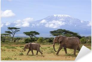 Pixerstick Sticker Elefanten vor dem Kilimanjaro