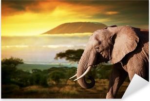 Sticker Pixerstick Elephant sur la savane. Mont Kilimandjaro au coucher du soleil. Safari