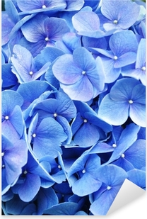 Extreme Close-Up Hydrangea Pixerstick Sticker