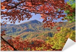Fall color in the Smoky mountains Pixerstick Sticker