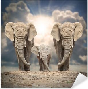 Sticker Pixerstick Famille de l'éléphant d'Afrique sur la route.