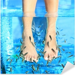 Pixerstick Sticker Fish Spa pedicure Rufa Garra