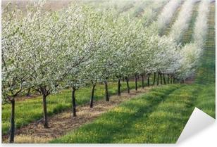 Flowering orchard Pixerstick Sticker