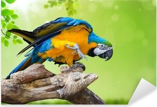 Sticker Pixerstick Fond vert naturel avec le perroquet ara