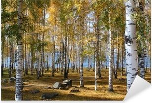 Sticker Pixerstick Forêt de bouleaux en automne