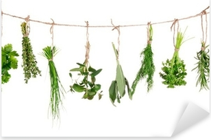 Fresh herbs hanging isolated on white background Pixerstick Sticker