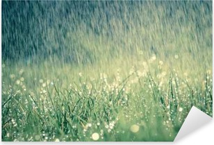 Frühlingsregen auf Wiese mit leichtem Farbeffekt Pixerstick Sticker