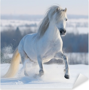 Pixerstick Sticker Galopperend wit paard