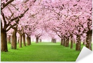 Gartenanlage in voller Blütenpracht Pixerstick Sticker