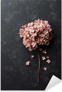 Pixerstick Sticker Gedroogde bloemen hortensia op zwart vintage tafel bovenaanzicht. Plat styling.