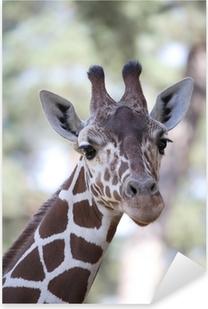Sticker Pixerstick Girafe