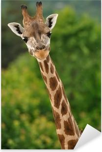 Pixerstick Sticker Giraffe hoofd met nek