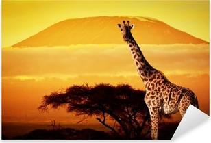 Sticker Pixerstick Giraffe sur la savane. Mont Kilimandjaro au coucher du soleil. Safari