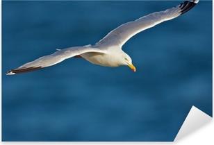 Pixerstick Sticker Goeland en vol au dessus océan