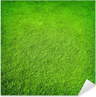 ~ Grass Green Field Sports Garden Lawn Turf Greenery Mrs Grossman Stickers ~