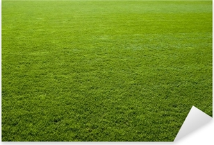 Green grass texture of a soccer field. Pixerstick Sticker
