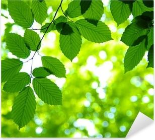 Green leaves Pixerstick Sticker
